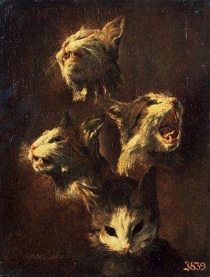 Study-of-a-Cat-s-Head